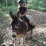 Cavalière sur Roco